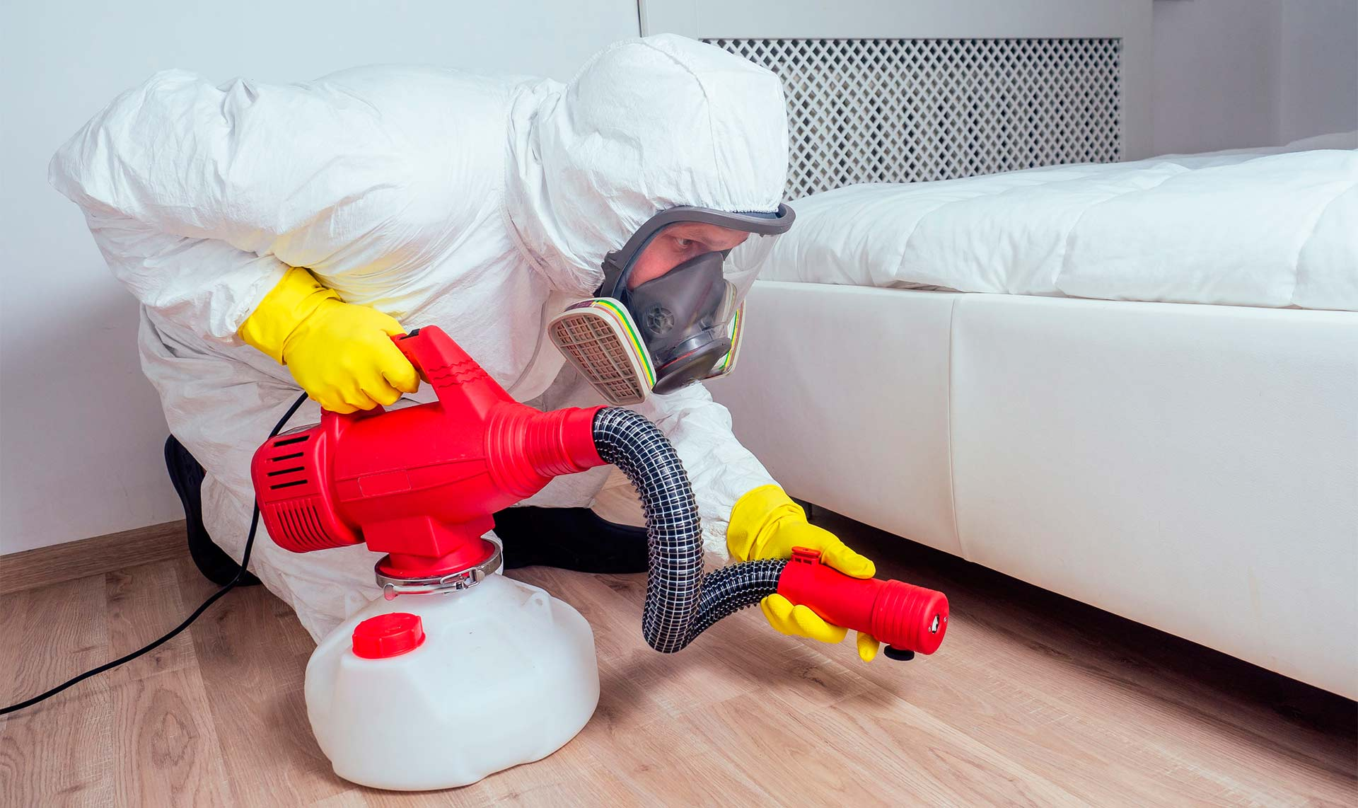 Pest Control & Home Cleaning Before Diwali